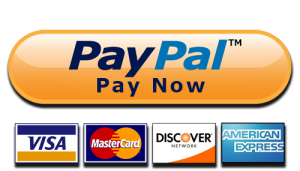 paypal-button-300x171.png